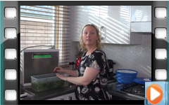 Erin using MMP-11 to clean Vegetables and Tomatoes